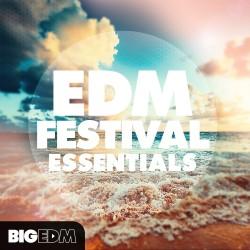 EDM Festival Essentials