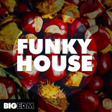 Funky House