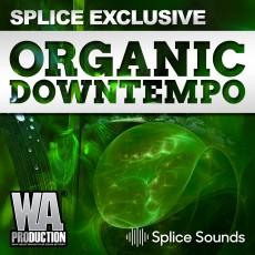 SPLICE EXCLUSIVE: Organic Downtempo