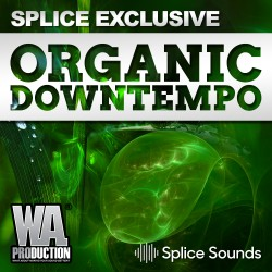 SPLICE EXCLUSIVE: Organic Downtempo
