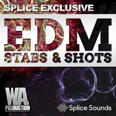SPLICE EXCLUSIVE: EDM Stabs & Shots