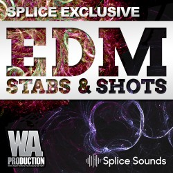 SPLICE EXCLUSIVE: EDM Stabs & Shots