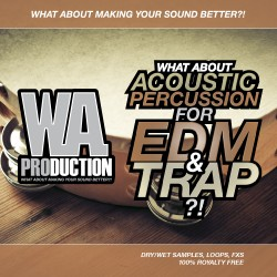 What About: Acoustic Percussion For EDM & Trap
