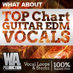 What About: Top Chart Guitar EDM Vocals