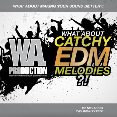 What About: Catchy EDM Melodies