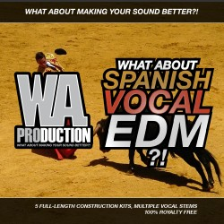 What About: Spanish Vocal EDM