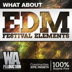 What About: EDM Festival Elements
