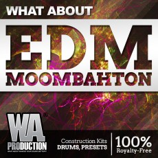 What About: EDM Moombahton
