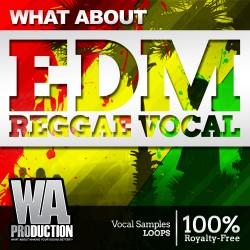 What About: EDM Reggae Vocals