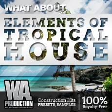What About: Elements Of Tropical House