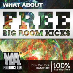 What About: FREE Big Room Kicks