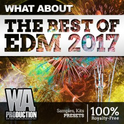 What About: The Best Of EDM 2017