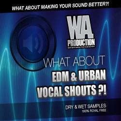 What About: EDM & Urban Vocal Shouts
